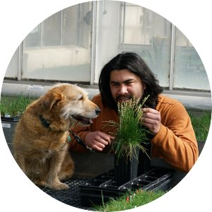 Joan Ortiz holds a clump of grass for a dog to see while inside of a greenhouse